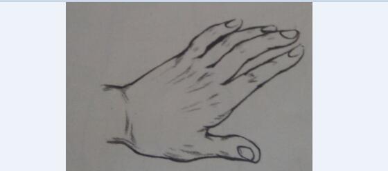 单人局部速写—手部