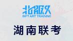 2018年湖南省美术联考素描考试