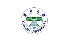 2017年云南大学云南省艺术类本科专业录取分数线
