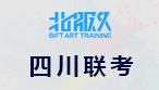 2018承认美术联考成绩的大学(四川省)