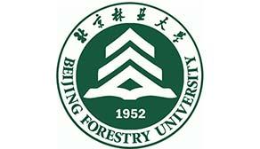 北京林业大学2019年承认美术统考成绩